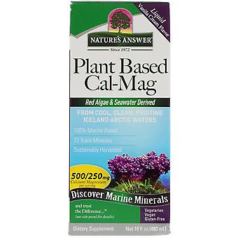 Nature's Answer, Plant Based Cal-Mag, Vanilla Cream Flavor, 16 fl oz (480 ml)