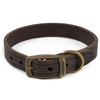 Ancol Heritage Latigo Leather Collar - Havana - 22mm x 39-48cm (Size 5)