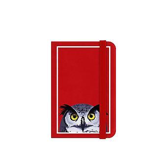 Inquisitive Creatures Owl Notebook