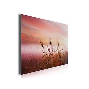 Painting photo landscape wheat field at bedtime, 80x50cm