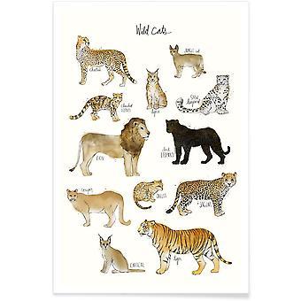 JUNIQE Print - Dzikie koty - Plakat przyrodniczy w kolorze brązowym i białym