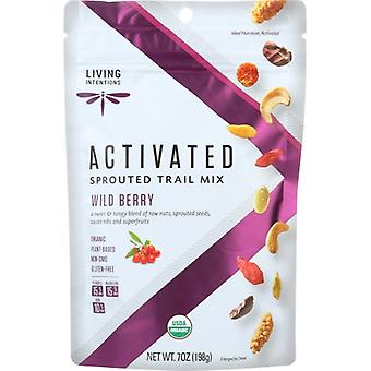 Living Intentions Trail Mx würde Bry Sprouted, Fall von 6 X 7 Oz