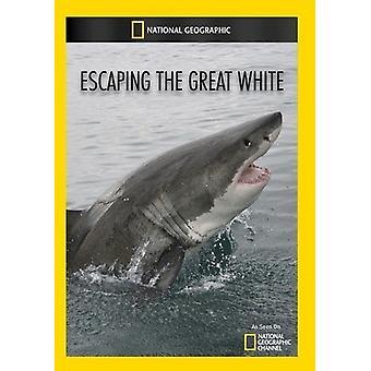 Flucht vor den großen weißen [DVD] USA import