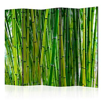 Paravento - Bamboo Forest II [Room Dividers]
