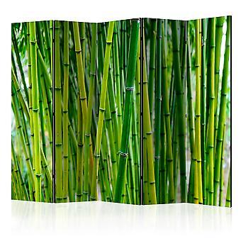 Rumsavdelare - Bamboo Forest II [Room Dividers]