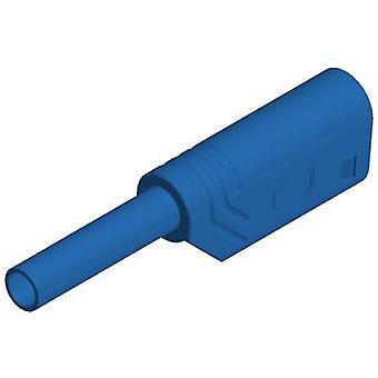 SKS Hirschmann MST S WS 30 Au Jack plug Plug, straight Pin diameter: 2 mm Blue 1 pc(s)