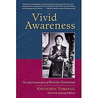 Vive conscience: Les Instructions de l'esprit de Khenpo Gangshar