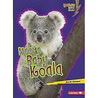 Träffa en Baby Koala (Lightning Bolt böcker Baby australiska djur)