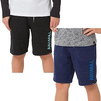 Animal Boys Kids Cove Casual Fleece Sports Jogger Bottoms Sweat Shorts
