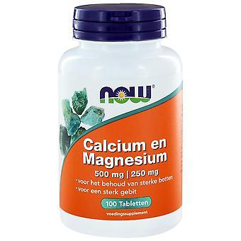 Calcium 500 mg en Magnesium 250 mg (100 tabs) - NOW Foods