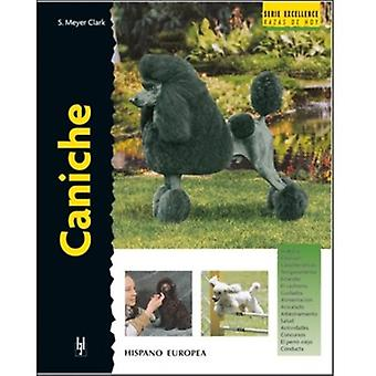 Hispano Europea Caniche Excellence (Dogs , Training Aids , Behaviour)