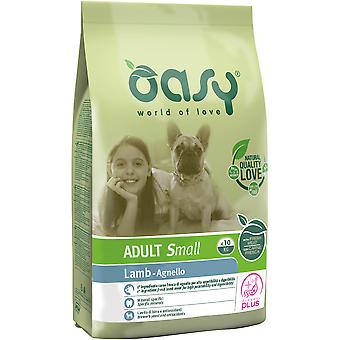 Oasy Adult Small Lamb (Dogs , Dog Food , Dry Food)