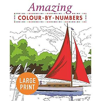 Amazing Colour-by-Numbers Large Print by Arcturus Publishing - 978178