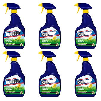 Sparset: 6 x ROUNDUP® Lawn Weed Free AF, 1 litre