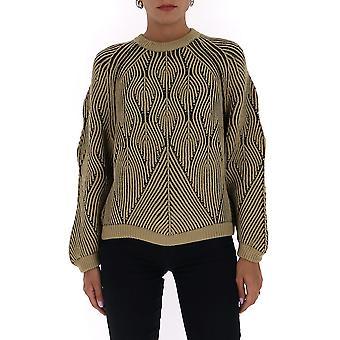 Alberta Ferretti 09406605a1431 Frauen's Multicolor Wollpullover