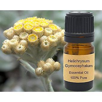 Gymocephalum Essential Oil