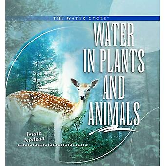 Water in Plants and Animals
