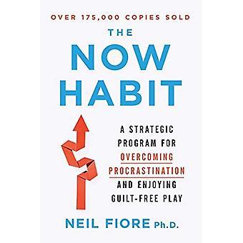 Now Habit: A Strategic Program for Overcoming Procrastination and Enjoying Guilt-free Play