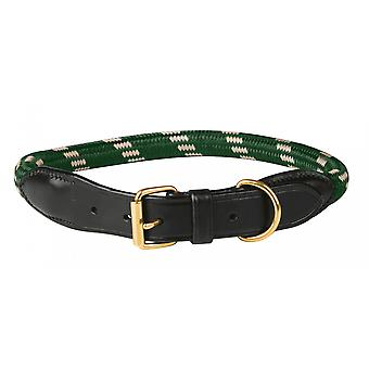 Weatherbeeta touw lederen Dog Collar-Hunter Green/bruin