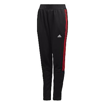 Adidas Boys 3-stripe Tiro Pants