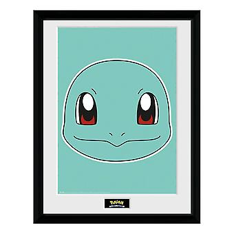 Pokémon, Tavla - Squirtle Face