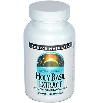 Source Naturals, Holy Basil Extract, 450 mg, 120 Capsules