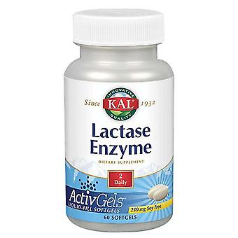 Enzyme Kal Lactase, 250 mg, 60 Softgels