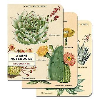 Cavallini Succulents Mini Notebook Journal Diary - Set of 3