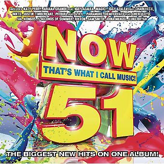 Various Artists - Now 51: That's What I Call Music [CD] USA import