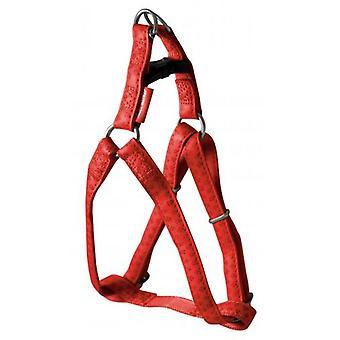 Nayeco Macleather Dog Harness Red (Hundar, Krage, Leads och Selar, Selar)