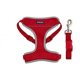 Nylon Voyage & Harnais d'exercice Rouge Medium 42-66cm