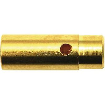 Modelcraft 71240 Bateria plug, bateria receptáculo 4 mm banhado a ouro 1 Par