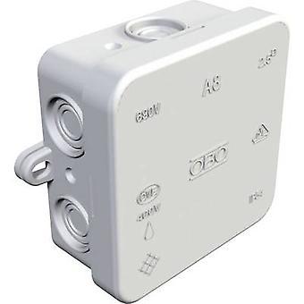 OBO Bettermann 352800000 Junction box (L x b x H) 80 x 80 x 36 mm lys grå IP54