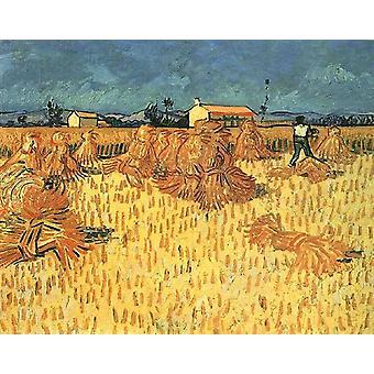 Harvest in Provence,Vincent Van Gogh,50x60cm