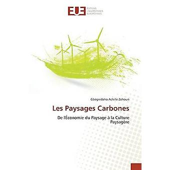Les Paysages Carbones by Zohoun Gbgnidaho Achille