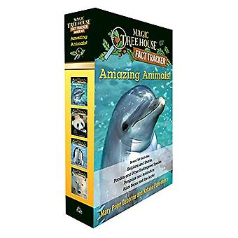 Amazing Animals! Magic Tree House Fact Tracker Boxed Set by Natalie P