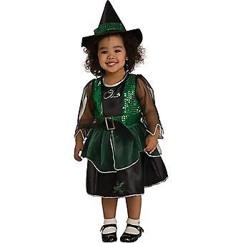 Elaka häxan Trollkarlen från Oz barn kostym