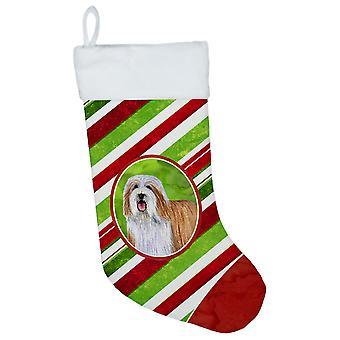 Bearded Collie Candy Cane ferie jul julen strømpe LH9240