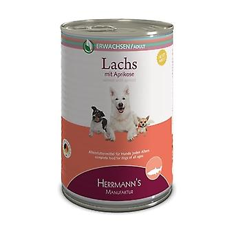 Salmon with Apricot Adult Dog Food None