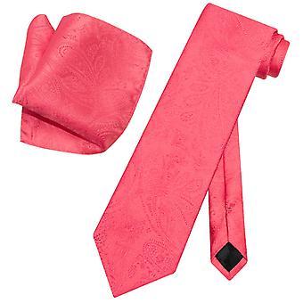 Vesuvio Napoli PAISLEY NeckTie & Handkerchief Matching Neck Tie Set