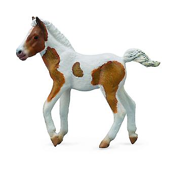CollectA Dartmoor Hill Foal ? Skewbald