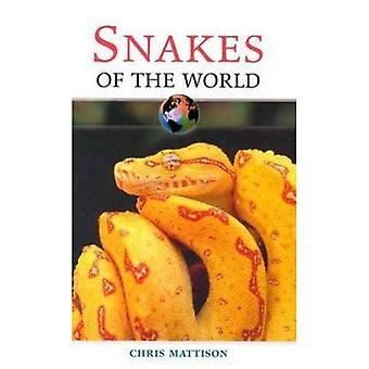 Ormar av värld (i världen) (världen)