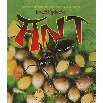 The Life Cycle of an Ant by Hadley Dyer - Bobbie Kalman - 97807787070