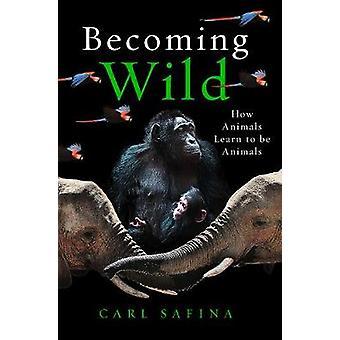 Bli vill - Hvordan dyr lære å være dyr av Carl Safina - 97817