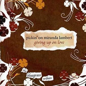 Pickin' on Miranda Lambert - Pickin' on Miranda Lambert [CD] USA import