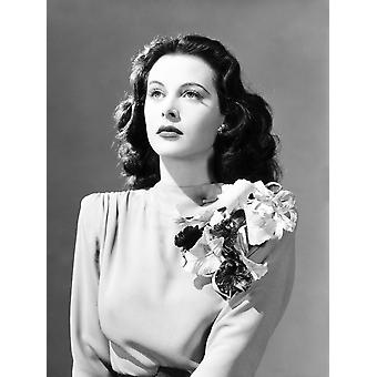 Come Live With Me Hedy Lamarrin 1941 valokuvatulostus