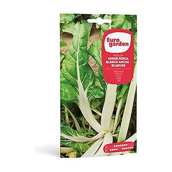 Green Chard Seed Penca Blanca Ancha-Blanver 10 g
