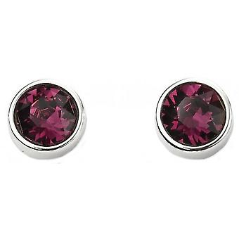 Beginnings February Swarovski Birthstone Earrings - Silver/Purple