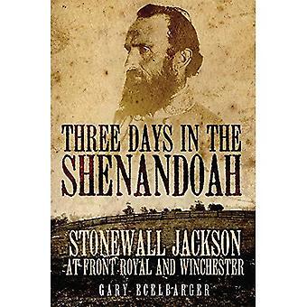 Tre giorni a Shenandoah: Stonewall Jackson a Front Royal e Winchester (campagne e comandanti)