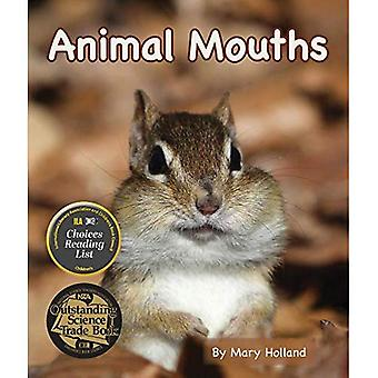 Animal Mouths